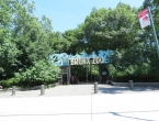 Let's Go to the Bronx Zoo - Shall We?