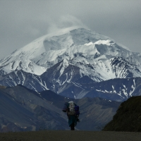 [Photo] of the Day:  Walking to Denali