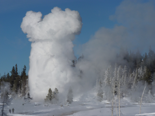 Geyser erupts in winter in Yellowstone National Park