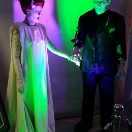 Ladies and Gentlemen,  May I Present Mr. and Mrs Frankenstein