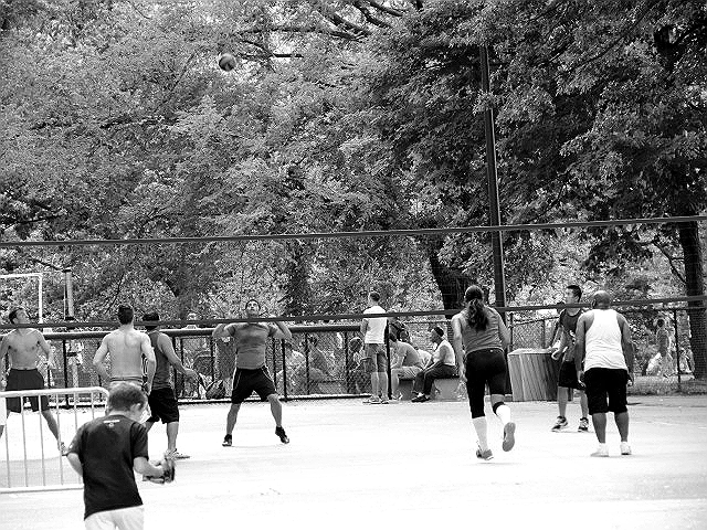 volleyball central park