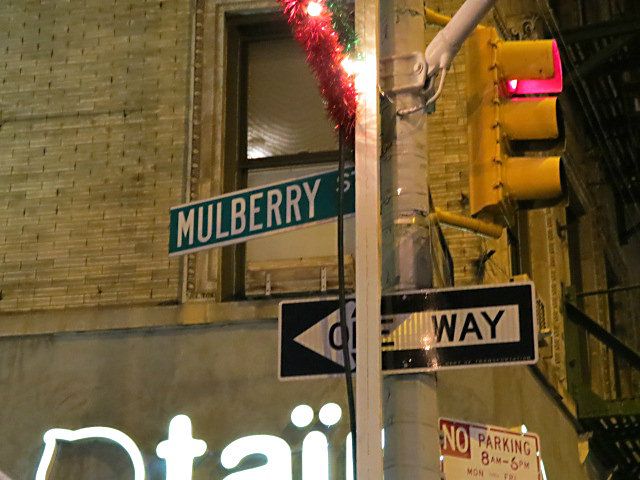 mulberry st feast of san gennaro 5