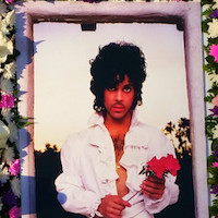 Thumbnail image for Prince Plays Hollywood Forever